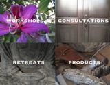 Motivational Workshops Private Consultations Group and Individual Retreats Self-Improvement Products