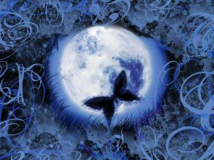 Butterfly-with-Blue-Moon-Wallpaper